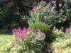 Ruhige, familienfreundliche Doppelhaushälfte in Toplage Baldham - IMG_0883